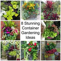 Potted Gardens Ideas 1000 Ideas About Container Flowers On