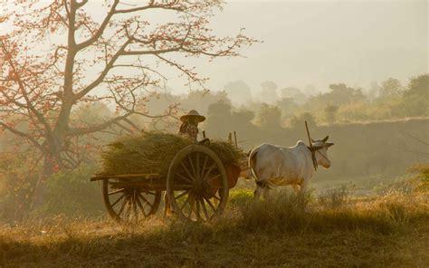 best image hosting indian nature wallpaper sekspic free image