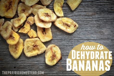can i give my banana dehydrating bananas the prairie homestead