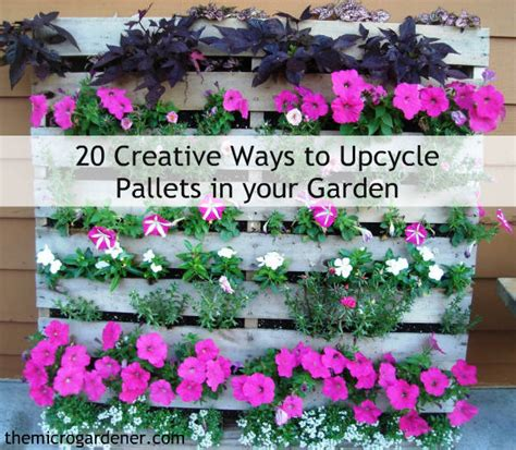 creative ways  upcycle pallets   garden