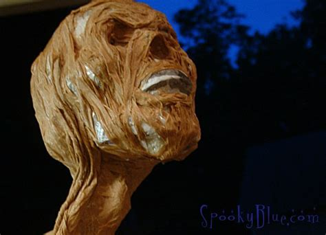How To Make A Paper Mache Skull - paper mache skulls spookyblue