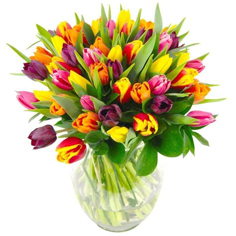 floral picks fresh floral picks for 2014 clare florist