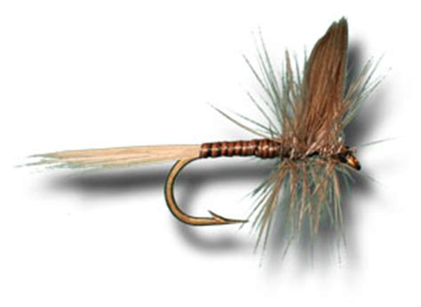 blue quill pattern fly fishing flies blue quill