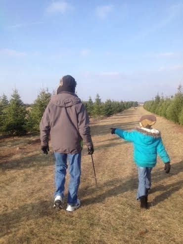 richardson christmas tree farm spring grove il kid