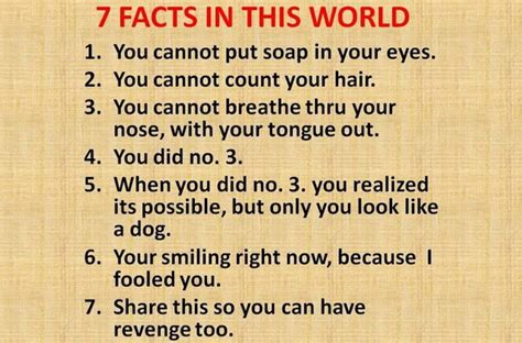 7 Facts On by 7 Facts In This World Humor Hub