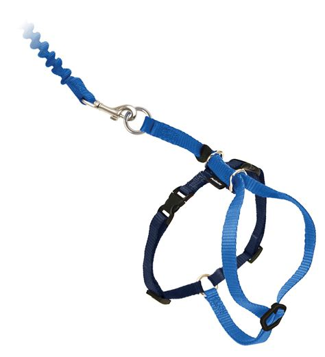 harness leash come with me harness and bungee leash by petsafe grp cwmk