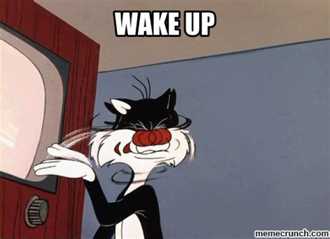 Wake Up Meme - wake up
