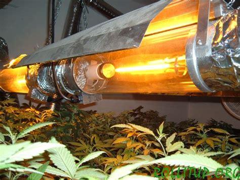high pressure sodium grow lights high pressure sodium hps lights the