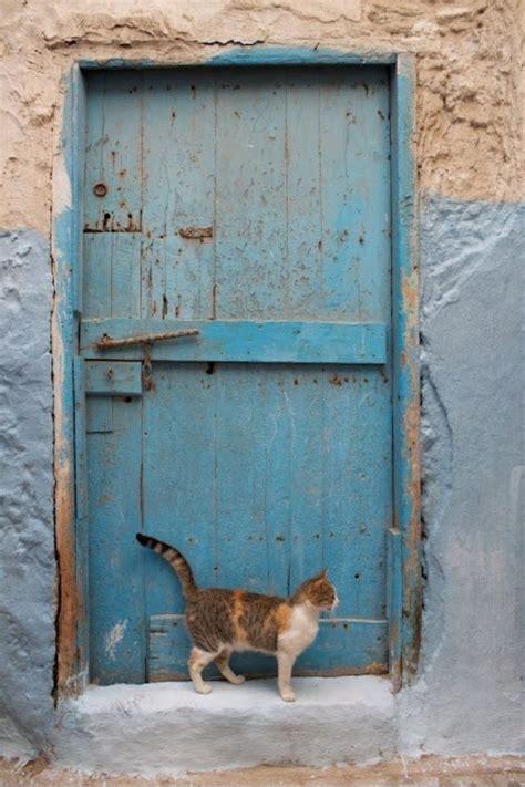 Cat Doors For Exterior Doors Cat Doors The Doors Of The World Pinterest