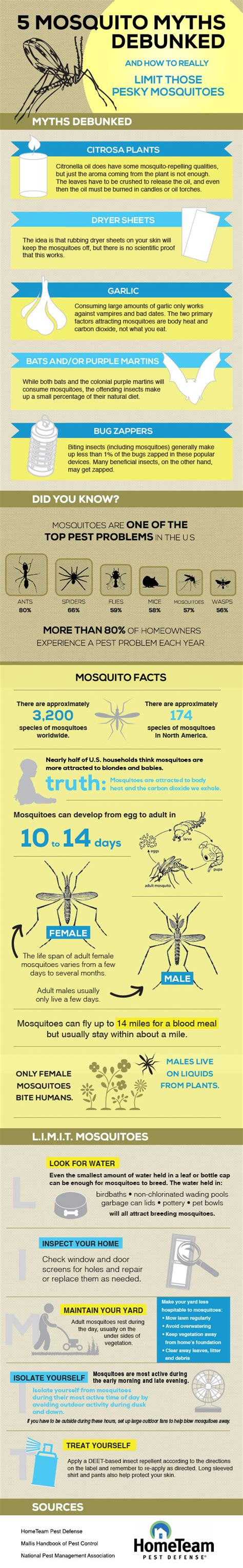 5 mosquito myths debunked and how to really limit those