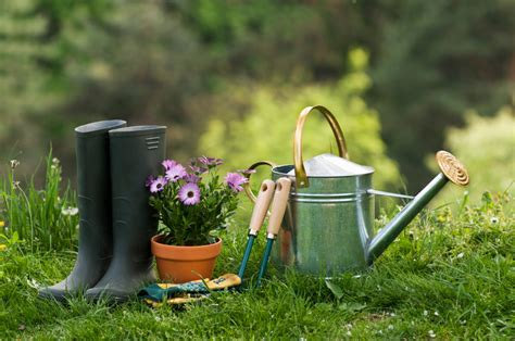 of gardening must garden tools for homeowners zing by