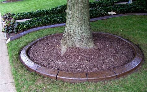 Landscape Edging With Pavers Paver Edging Concrete Paver Landscape Edging Pic 15