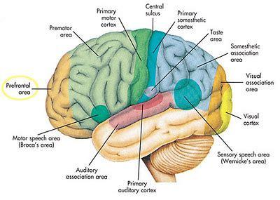 Otak Otakku 2011 missyella