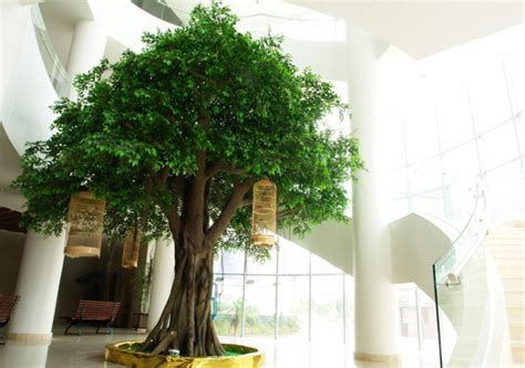 alberi da interno cheap big artificial banyan decorative tree large outdoor