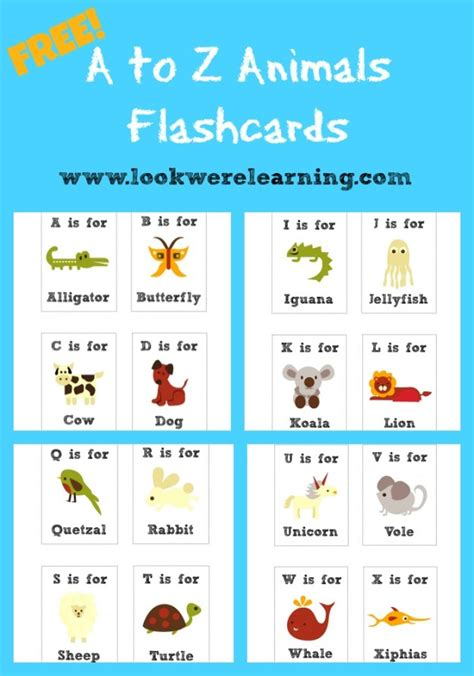spanish alphabet flashcards printable abc s 123 printables and more spanish english