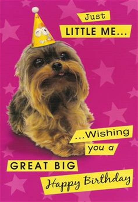 shih tzu singing happy birthday minion sing happy birthday song cards minions singing happy