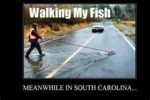 Flood Meme - charleston flooding memes taking a walk photomojo