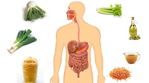 best cleanse best colon cleanse and detox soup recipe colon
