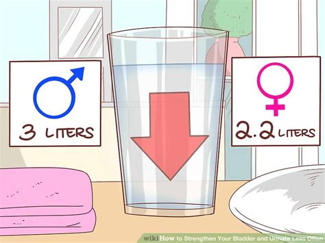 how to use the bathroom more often how to strengthen your bladder and urinate less often