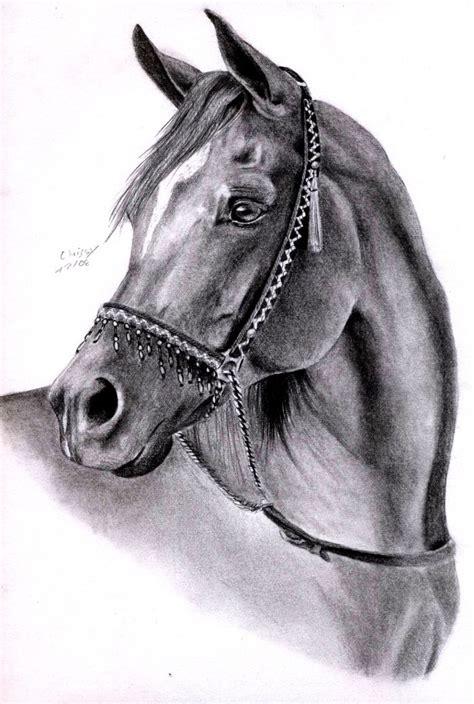 Belgian Kitchen Design by Arabian Horse By Maniaadun Art Decoration Design
