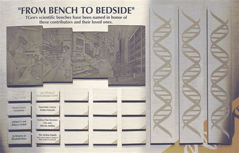 from bedside to bench from bedside to bench 28 images home sawc network