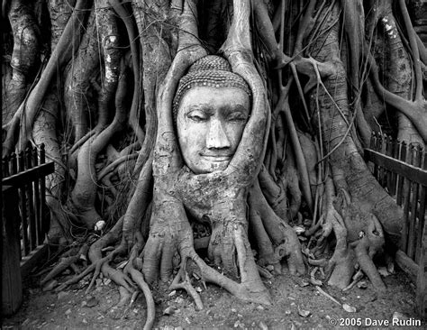 the face of the buddha by dave rudin black amp white magazine