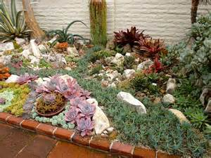 reader photos a gem of a succulent garden fine gardening