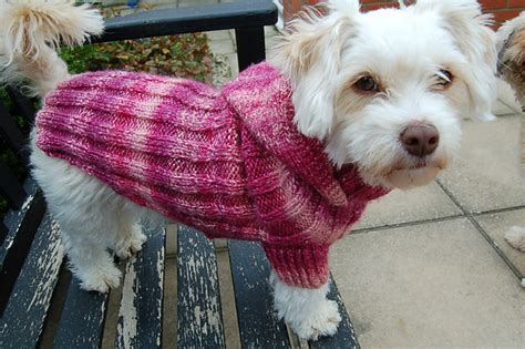 wool pattern for dog coat miss julia s patterns free patterns everything for dogs