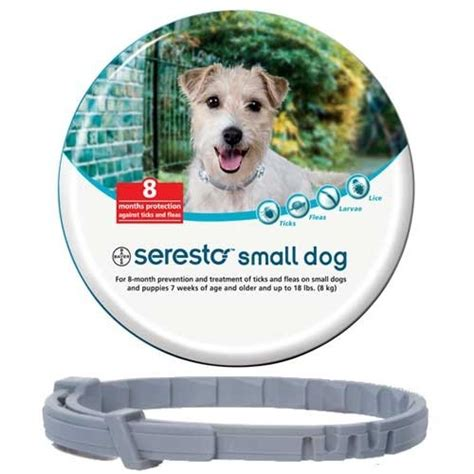 best tick collar for dogs best flea collar for dogs stop the scratching herepup