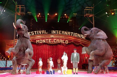 best circus deck the s international circus festival of monte