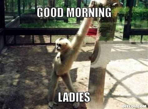 Cute Good Morning Meme - 99 best good morning memes cute funny beautiful