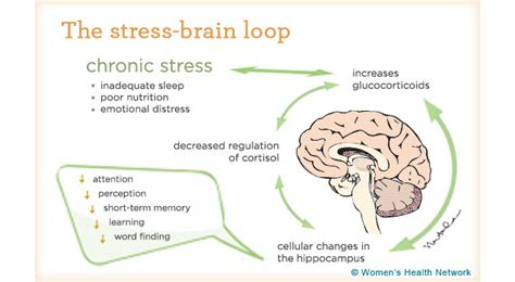 the stress test how pressure can make you stronger and sharper books question how do you handle stress