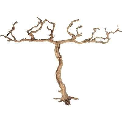 decorative wood branches for sale decorative branches grapewood branches