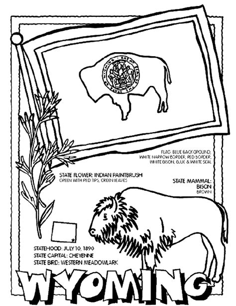 coloring page indian paintbrush indian paintbrush flower sketch coloring page