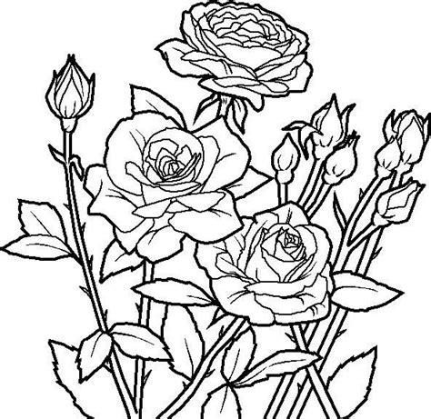 unique mandala coloring pages flower unique coloring page reference