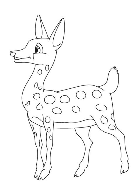 real deer coloring pages free coloring pages of realistic deer