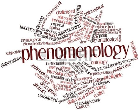 a process model studies in phenomenology and existential philosophy books phenomenology