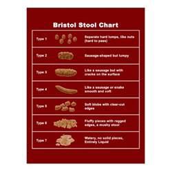bristol stool chart post cards