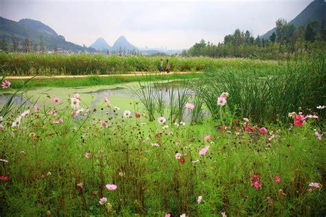minghu wetland park by turenscape 21 171 landscape architecture works landezine landscape