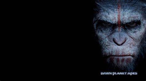 awn of the planet of the apes this weekend at the movies dawn of the planet of the apes