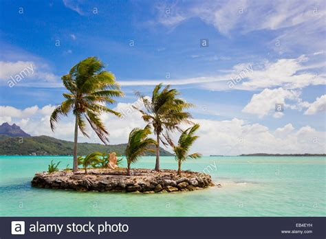 with palm tree island a small island with palm trees the shore near the