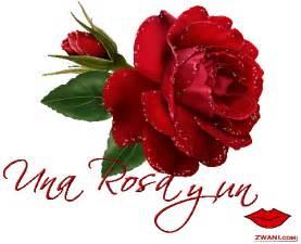 imagenes de rosas rojas para una madre flores comestibles variedad y recetas taringa