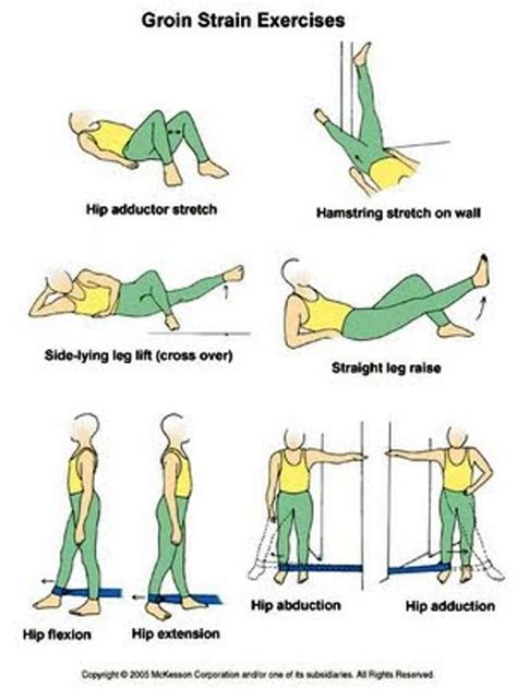 pulled groin diagram exclusive physiotherapy guide for physiotherapists
