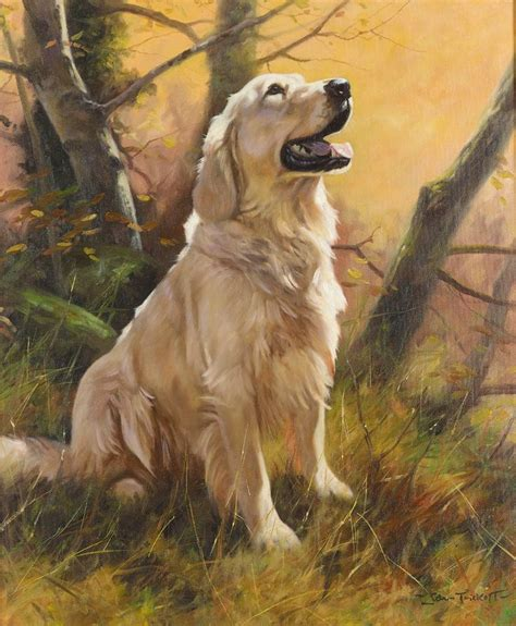 golden retriever poster best 25 golden retriever ideas on pet and golden