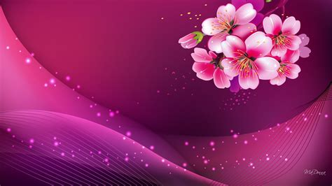 wallpaper pink hd widescreen pink background hd image pc colour pink