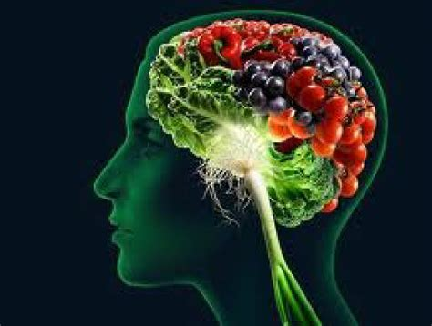 how to feed a brain nutrition for optimal brain function and repair books eat yourself smart brain through diet