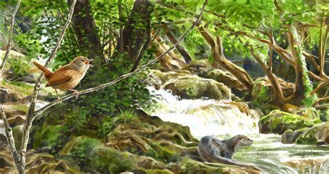 imagenes de ambientes naturales y artificiales ciencias naturales biolog 237 a ecosistemas naturales y