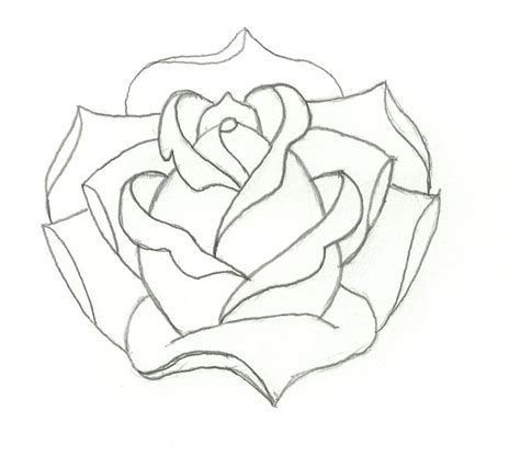 drawing pattern of rose rose outline outlines pinterest roses and rose outline