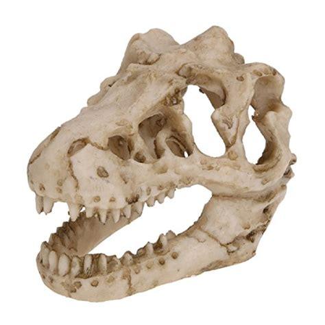 Skull Aquarium Decorations by Aquarium Decorations Small Skull Cave Dinosaur Skeleton