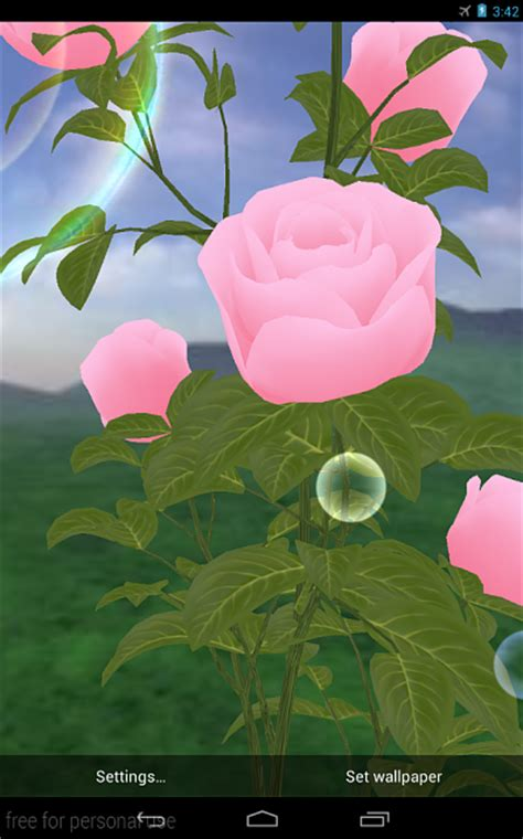 rose themes live free roses 3d live wallpaper android forums at